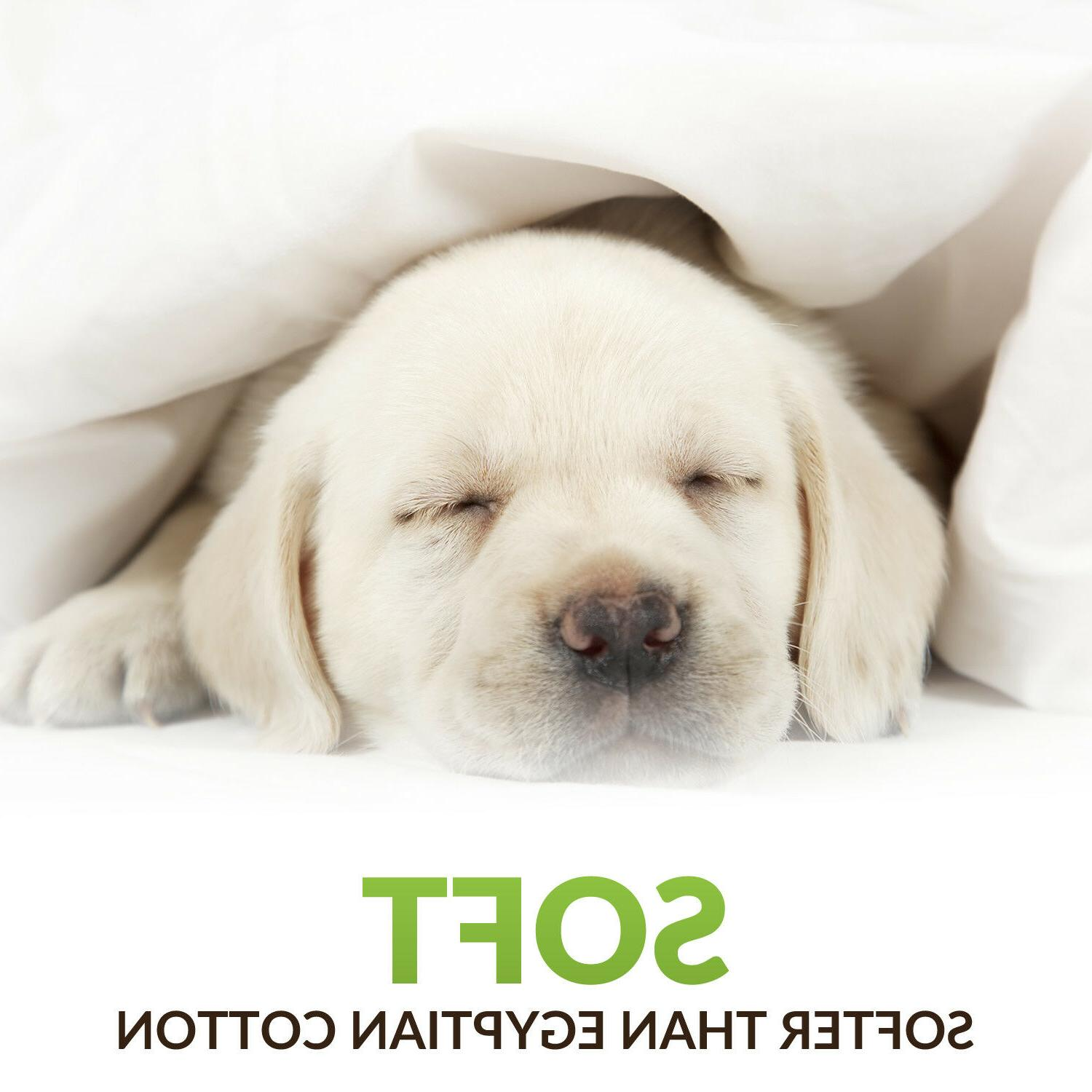 Cosy House Bamboo Bed - Hypoallergenic Bedding
